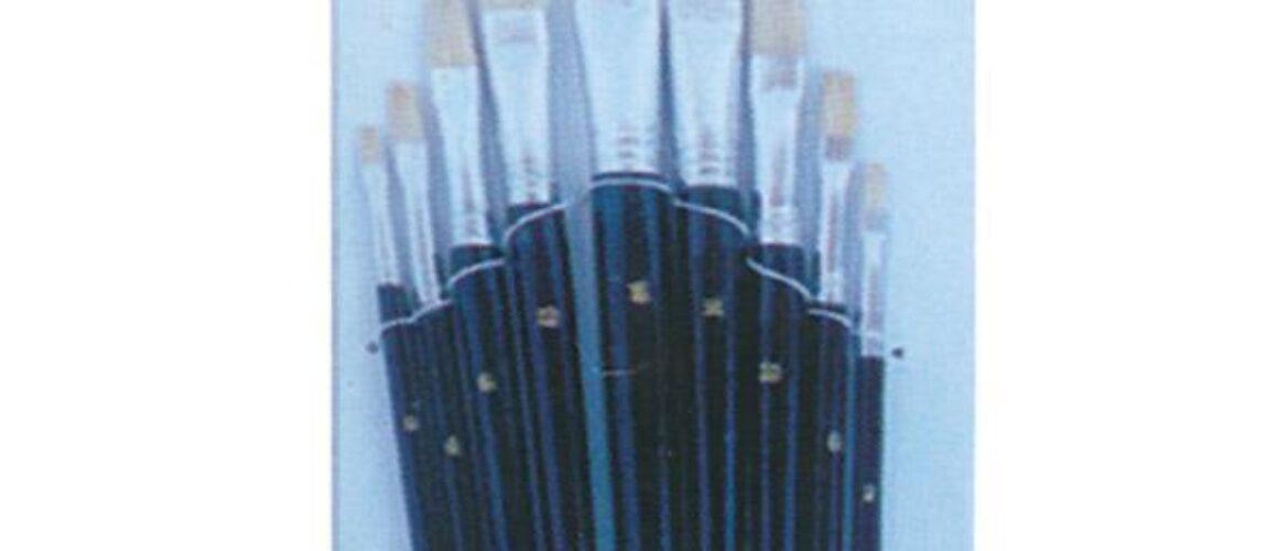 Pensule set 9 buc -12951
